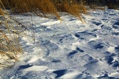 Texturen av snön Fotografering för Bildbyråer