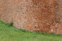 Texturen av tegelstenväggen av en forntida slott, närbild Ho royaltyfri fotografi