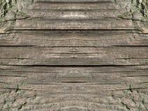 Texturen av trä, de gamla träbrädena Arkivbilder