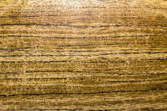 Texturen av trädet, horisontalband, slut upp Arkivfoto