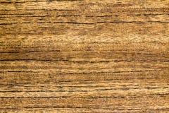 Texturen av trädet, slut upp, bakgrund Royaltyfria Bilder