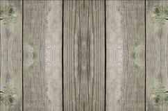 Texturen av trät Fotografering för Bildbyråer