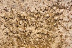 Texturen av väggarna av hus i Pompeii Royaltyfria Foton