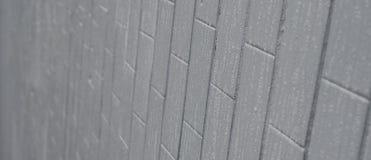 Texturen av väggen från den gamla tegelplattan, målad grå färg under påverkan av kondensation Mycket små droppar och vattenfläcka royaltyfri foto