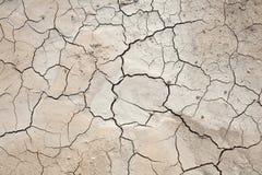 Texturen - grond - gebarsten vuil Stock Afbeeldingen