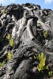 Texturer av lava i Hawaii Royaltyfria Foton