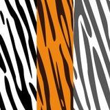 Texturer av sebran och tigern Arkivfoto