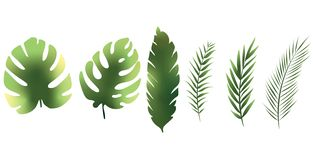 Texturer för uppsättning för gräsplan för färg för vändkretsbladtecknad film vektor illustrationer