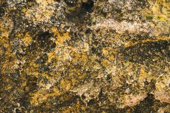 Texturer och modeller av stenblock i natur royaltyfria foton