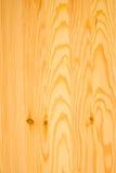 Texturera av den wood bakgrundscloseupen Royaltyfri Foto