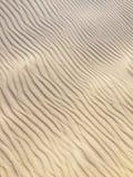 Texturera av sanden fotografering för bildbyråer