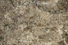 Texturera den hårda stenen och vaggar med sprickor och smuts som täckas med mossa som är passande för bakgrund Royaltyfria Bilder