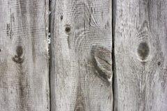 Texturera gammal wood textur med den naturliga modellen eller textur av det gamla trät Vit yttersida med wood textur Fotografering för Bildbyråer