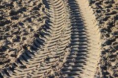 Texturera spår av konstruktionsmaskineri på den sandiga stranden Royaltyfria Foton