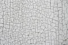 Texturera sprucket skalande färgpulver arkivbilder