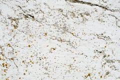 texturerad bakgrund Royaltyfria Bilder