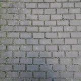 Texturerad bakgrund av en tegelstenvägg Royaltyfri Fotografi