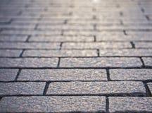 Texturerad bakgrund av en trottoarsten Arkivbild