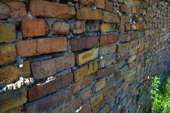 Texturerad bakgrund för vägg för röd tegelsten Royaltyfri Foto