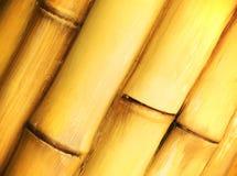 texturerad bakgrundsbambu Royaltyfri Foto