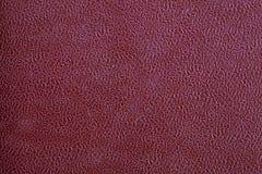 texturerad brown Arkivbilder