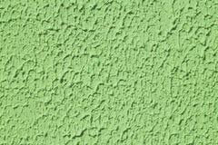 Texturerad grön vägg med modellen Arkivfoton