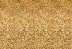 Texturerad guld- bakgrund Fotografering för Bildbyråer