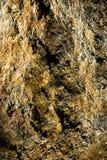 Texturerad guld vaggar yttersida Royaltyfri Foto