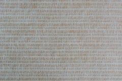 Texturerad kanfas Arkivfoton