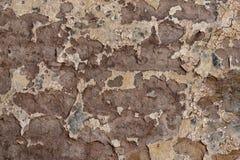 Texturerad knäckt murbruk för bakgrund som vit strilades delvist med en rosa färg, skuggade den spruckna väggen Arkivbilder