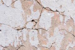 Texturerad knäckt murbruk för bakgrund som vit strilades delvist med en rosa färg, skuggade den spruckna väggen Kan användas som  Royaltyfri Foto