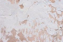 Texturerad knäckt murbruk för bakgrund som vit strilades delvist med en rosa färg, skuggade den spruckna väggen Kan användas som  Royaltyfria Foton