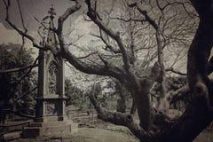 Texturerad kyrkogård - Arkivfoto