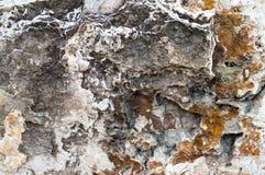 texturerad rock Arkivfoto