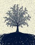 texturerad tree Fotografering för Bildbyråer