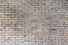 Texturerad vägg för bakgrundsbruk Royaltyfria Bilder