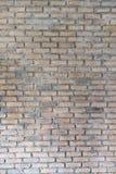 Texturerad vägg för bakgrundsbruk Fotografering för Bildbyråer
