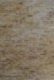 Texturerad vägg för bakgrundsbruk Arkivbild
