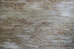 Texturerad vägg för bakgrundsbruk Royaltyfri Foto