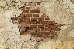 texturerad vägg för tegelsten stuckatur Royaltyfri Foto