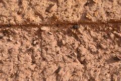 Texturerad v?gg av gyttjategelstenhuset i Sudan royaltyfri bild