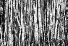 texturerad white för bakgrund black Arkivbilder
