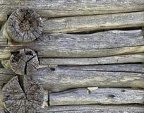 Texturerad wood bakgrund Fotografering för Bildbyråer