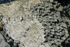 Texturerade havsstenar Royaltyfri Bild