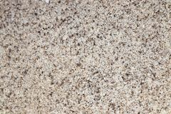 Texturerade sandig sandig grunge för vitt oväsen abstrakt bakgrund Royaltyfria Bilder