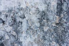 Texturerade väggar med smuts fotografering för bildbyråer