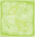 Texturerar pappers- Eco grön Grunge gammal bakgrund Arkivfoton