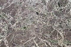 Texturerat bakgrundsabstrakt begrepp marmorera marmor Arkivfoto
