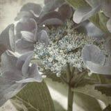texturerat gammalt papper för bakgrund Royaltyfri Foto
