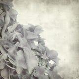 texturerat gammalt papper för bakgrund Royaltyfria Foton